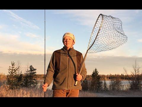 Moose Hunt 5