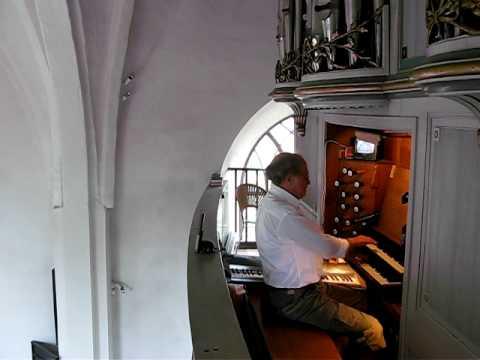 Pipe Organ Eskild  Nielsen