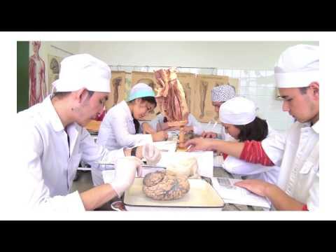 RUDN University: studies and laboratories
