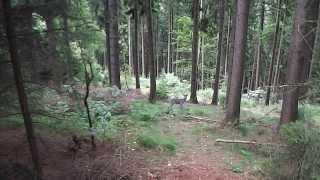 weekend winterberg duitsland 16-18 augustus/ weekend winterberg germany