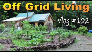 OFF GRID HOMESTEADING  Widowmakers, Droughts and Floods.  We've Got This.  Cabin Life Vlog 102