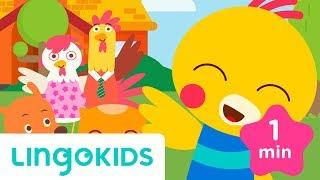 Hello & Goodbye Song - Greetings Songs for Preschoolers - Lingokids