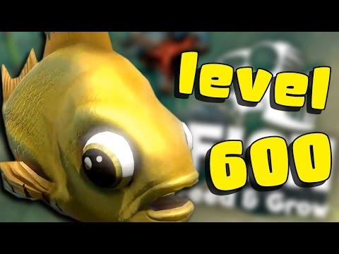 LEVEL 600 CÁ VÀNG ĐÃ XÓA SỔ CẢ ĐẠI DƯƠNG - Feed And Grow : Fish #13   POBBrose ✔