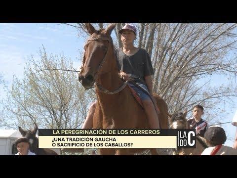 A caballo hasta Luján: ¿Tradición o maltrato animal?