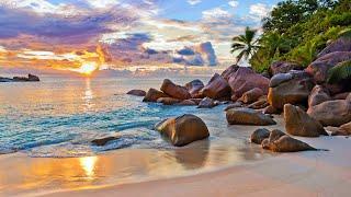 Убежище в Индийском океане The Sanctuary Of The  Ndian Ocean 4K