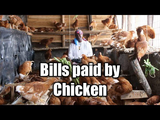 My Bills Paid By Chicken