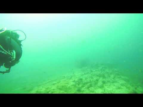 Diving Lanzarote - 34