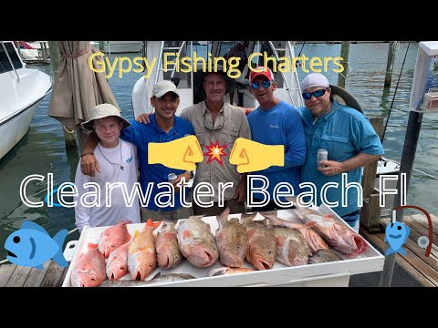 💥 Awesome Clearwater Beach Fishing Trip | Grouper And Snapper