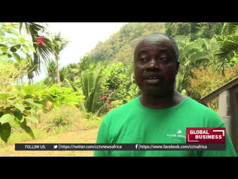 Sao Tome & Principe looking to boost ecotourism