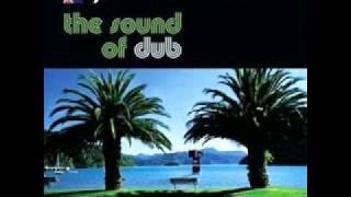 Dukie, Joe & DJ Fitchie - Midnight Marauders (Mu's triple 5 steppa's dub)