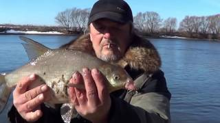 Рыбалка в волгоградской области видео