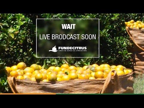 Disclosure orange production forecast 2017/18