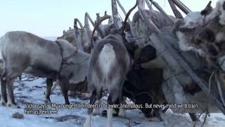 Chauchu documentary film