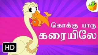 Kokkupaaru | கொக்கு பாரு கரையிலே | Tamil Rhymes for Kids | Tamil Cartoons