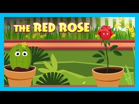 THE RED ROSE | ENGLISH ANIMATED STORIES FOR KIDS | TRADITIONAL STORY | T-SERIES