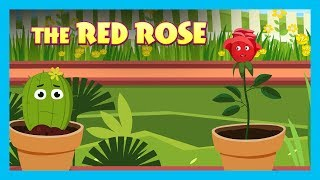 THE RED ROSE   ENGLISH ANIMATED STORIES FOR KIDS   TRADITIONAL STORY   T-SERIES