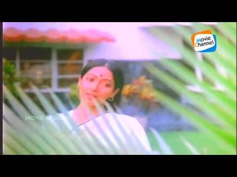 Thalam Thalolam | AKKACHIYUDE KUNJUVAVA | Evergreen Malayalam Movie Song | S Janaki | Johnson Master