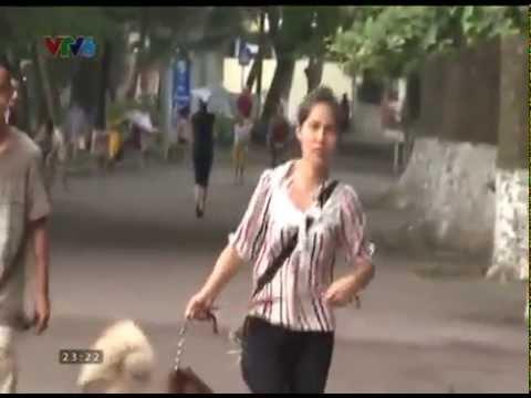 Đùa chút thôi mới nhất VTV6 13/08/2014 (Just For Laughs Gags Viet Nam)