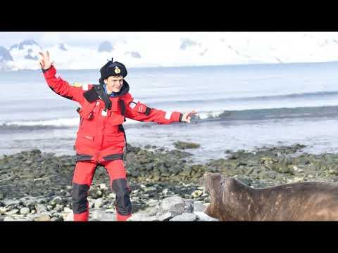 Антарктида Мир животных - поход на яхте февраль 2020 года.