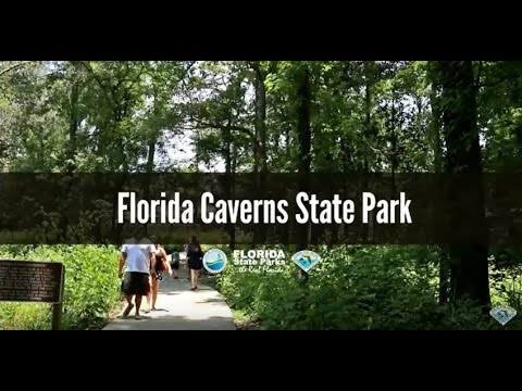 Firsthand Florida Fun: Florida Caverns State Park