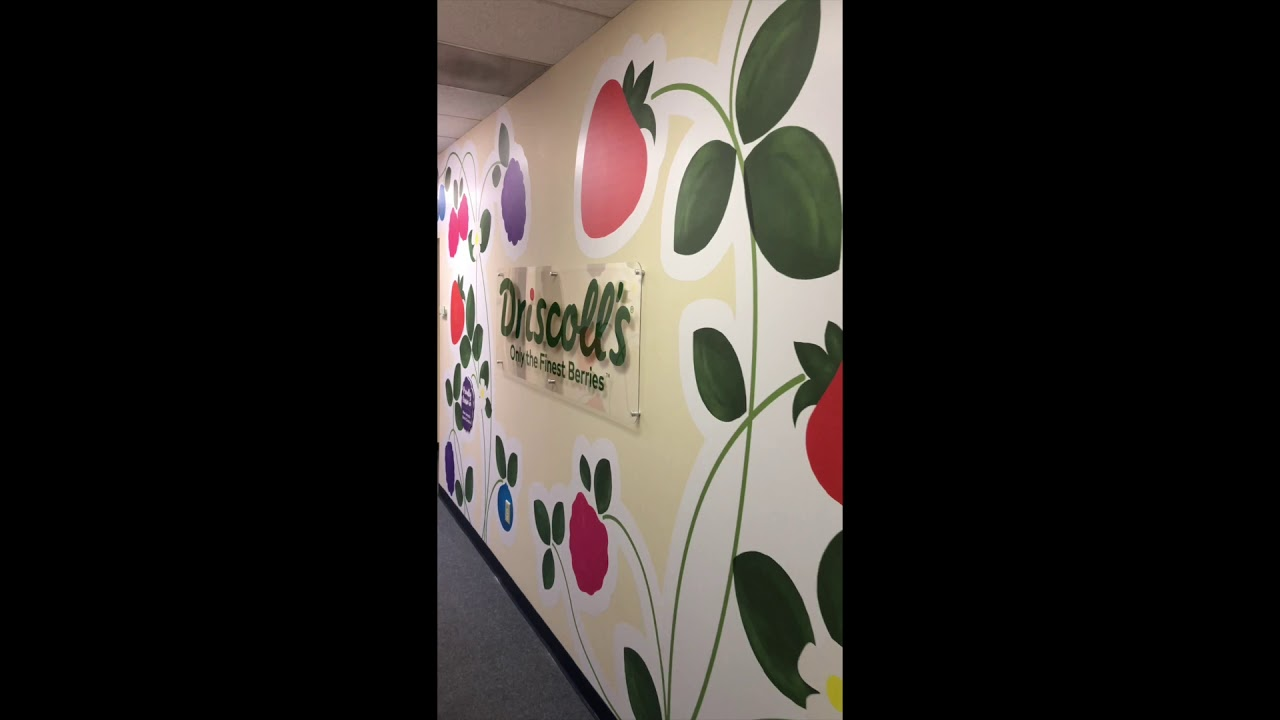 Driscoll's Custom Cut Wall Mural