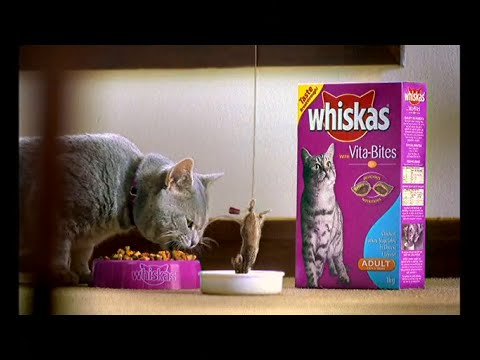 whiskas-vitabites---bungee-(2003,-australia)