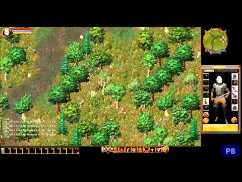 Ultima Online Review | Graz Reviews