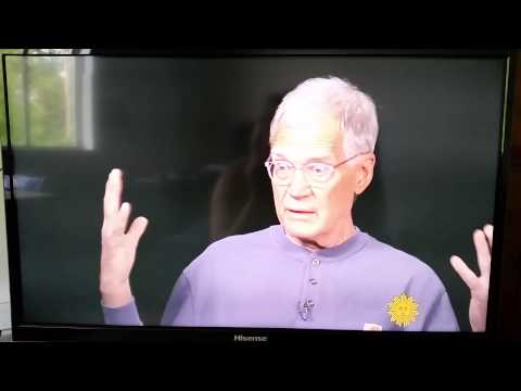 David Letterman  interview with Jane  Pauly  CBS S