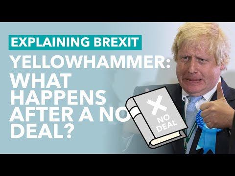 Leaked Government Document Reveals No Deal Consequences - Brexit Explained