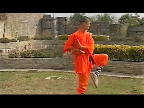 Shaolin small sun kung fu (yang quan)