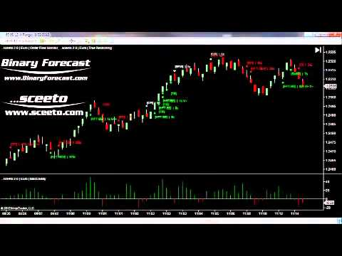 multi-chart-live-trades-22nd-aug-2012-daily-report-forex-euro-usd-6e-futures