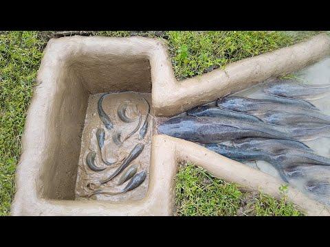 Amazing Hole Fish Trap- Smart Boy Build Fish Trap By Muddy Soil ..