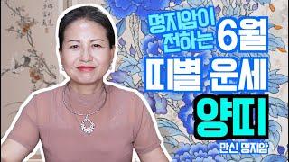 [용한무당 명지암] 2020년 양력 6월 띠별 운세 양띠 [남양주점집]