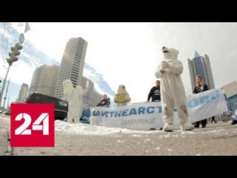 Экозащита стала удобной ширмой для недобросовестных бизнесменов - Россия 24