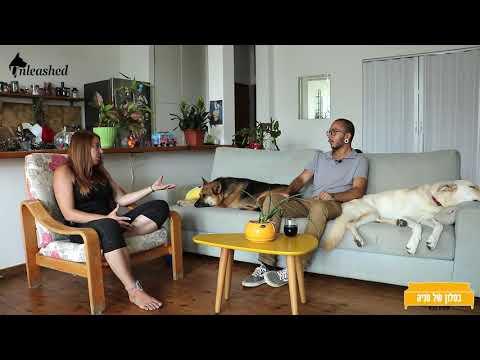 בסלון של טניה פרק 2  - כלבים בצל הקורונה