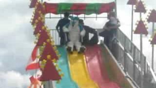 Furry Fun Slide!