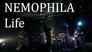 【LIVE】NEMOPHILA/Life