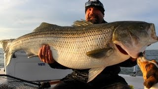 ONE REALLY BIG STRIPER! Striped Bass fishing Chesapeake bay. GIANT STRIPER! Team Old School.