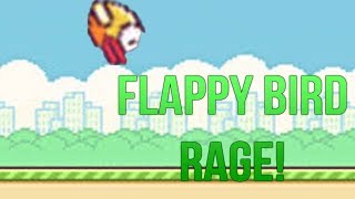 How Playing Flappy Bird Actually Feels Like! [Flappy Birds Rage]