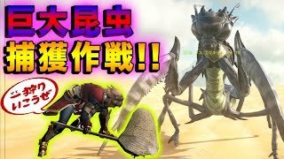 【ARK Survival Evolved】巨大昆虫捕獲作戦!!【ARK Scorched Earth】#37