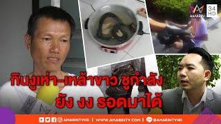 ทุบโต๊ะข่าว:เปิดใจรปภ.เกือบตายต้มงูเห่ากินทั้งตัว อ้างขายราคาถูกเลยกินเอง-หมอชี้สุดอันตราย 09/06/61