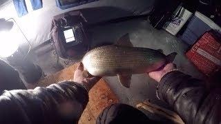 Не рыбалка а просто сказка!Not fishing, but just a fairy tale!