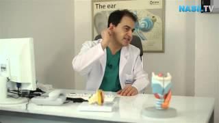 Kulak kiri nasıl temizlenmelidir?