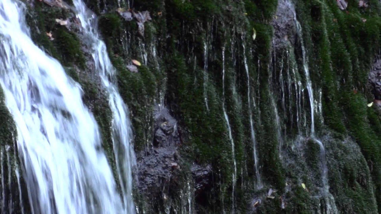 白水の滝(群馬県神流町)posted by tutrasteroly