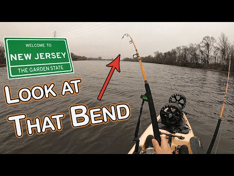 Some BIG OLE Channie Catfish - On A Kayak - In New Jersey!