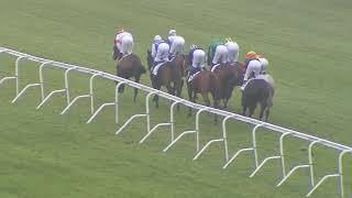 Vidéo de la course PMU PRIX FITERARI