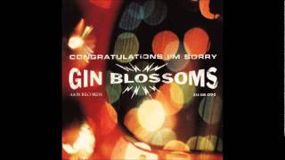 Gin Blossoms - Not Only Numb (Album Version)