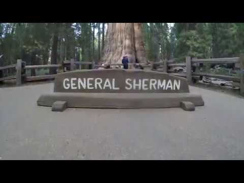 Sequoia National Park & The General Sherman Tree