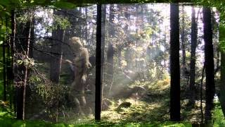 Skogsrå/Huldra/Hulder  (Music: The land of eternal winter)