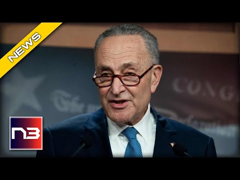 RUTHLESS: Schumer BRUTALY Mocks Freezing Texans, Then Blames Them For the Crisis